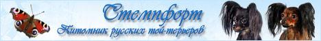 Питомник Стемпфорт - Русский той-терьер
